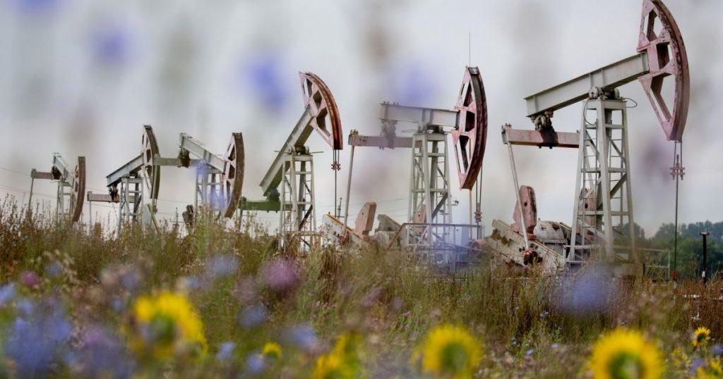 ОПЕК + надеется удержать рост добычи на фоне восстановления цен на нефть |  Новости Алжира